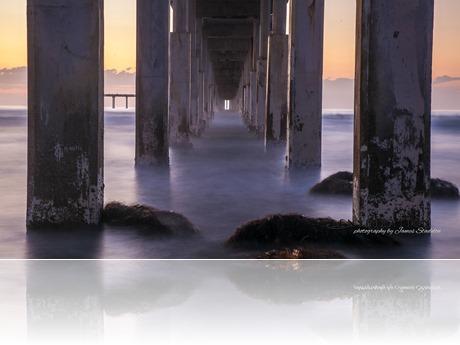 3943_JAS_San Diego-California-USA W