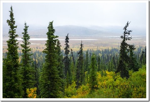 3296_near Glennallen-Alaska-USA_Canon EOS 5D Mark II, 65 mm, 1-80 sec at f - 8.0, ISO 800