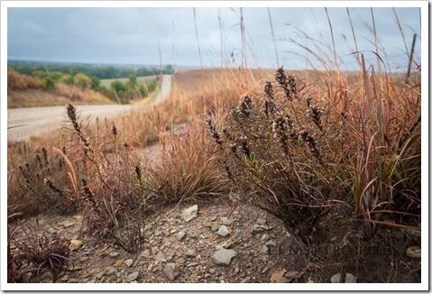 7806_St. Marys-Kansas-USA_Canon EOS 5D Mark II, 24 mm, 1-40 sec at f - 4.0, ISO 400