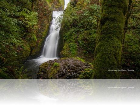 9398_JAS_Portland-Oregon-USA W