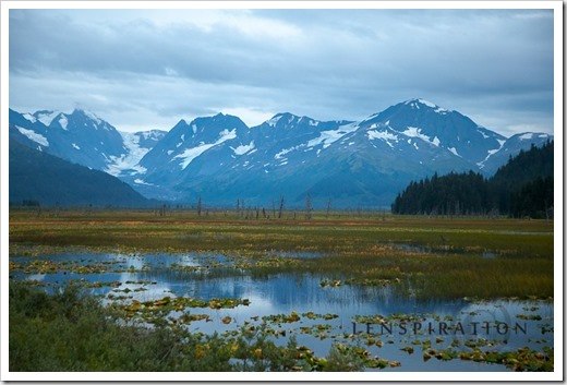 3170_Chugach National Forest-Alaska-USA_Canon EOS 5D Mark II, 70 mm, 1-40 sec at f - 4.0, ISO 800