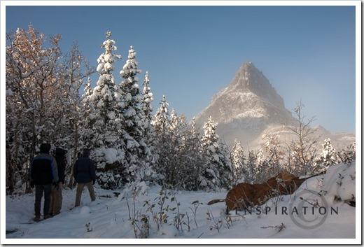 0336_Many Glacier-Montana-USA_Canon EOS 40D, 17 mm, 1-200 sec at f - 8.0, ISO 100