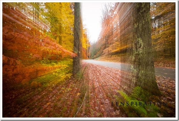 Autumn Hastens On