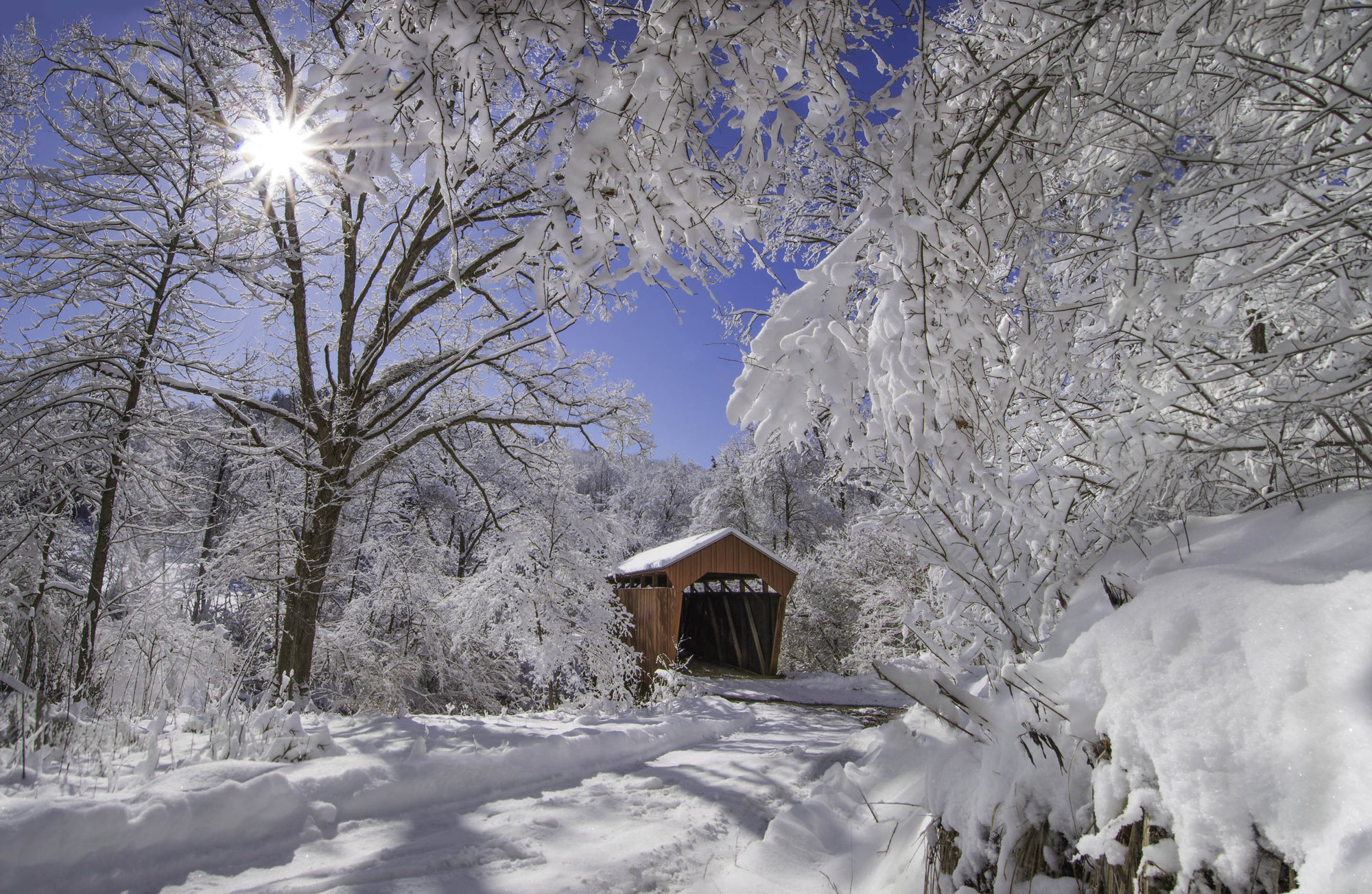 Reply To: Covered Bridge Revisited