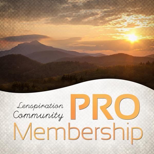 Store_Membership-PRO