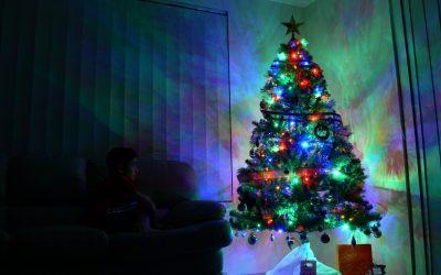 Reply To: Christmas Tree