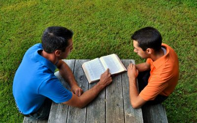 Reply To: Proverbs 27:17 VPO: Friendship (ends Aug 31)
