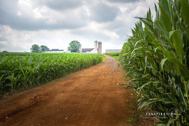 150707-JAS-2645_Mondale Rd., Pennsylvania, USA_Canon EOS 5D Mark II 40 mm 1-100 sec at f - 8.0 ISO 100