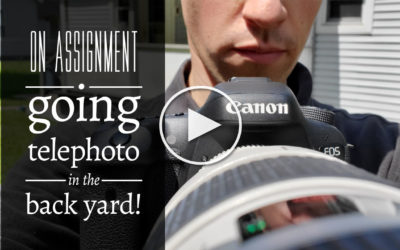 On Assignment: Going Telephoto in the Back Yard!