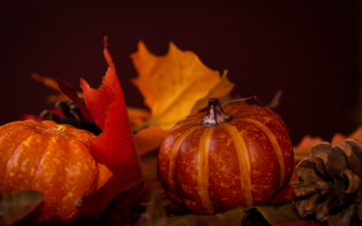 Reply To: VersePic: Thanksgiving Background