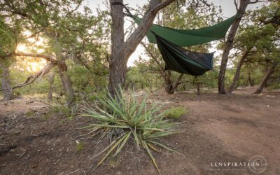 Camping Stories