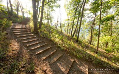 The Hike Down From Seneca Rocks